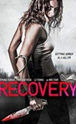 Recovery 2019 Altyazılı 1080p